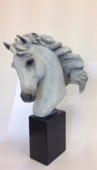 White Horse Head 'Equine Spirit'